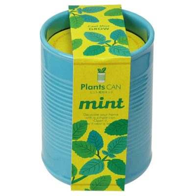 Teacher-christmas-gift-grow-pot-mint