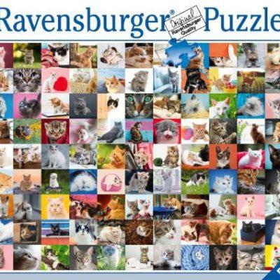 cats-jigsaw-puzzles-australia-1500-pieces