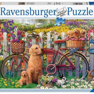 Jigsaw-puzzles-animals-australia-dogs